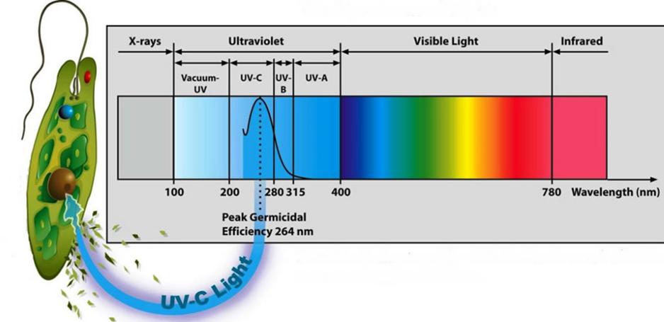 Gmar Ambiental - Desinfecção e Esterilização Ultravioleta